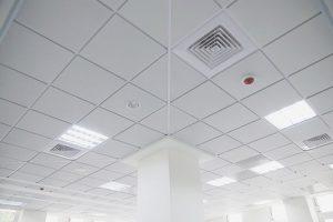 سقف شبکه