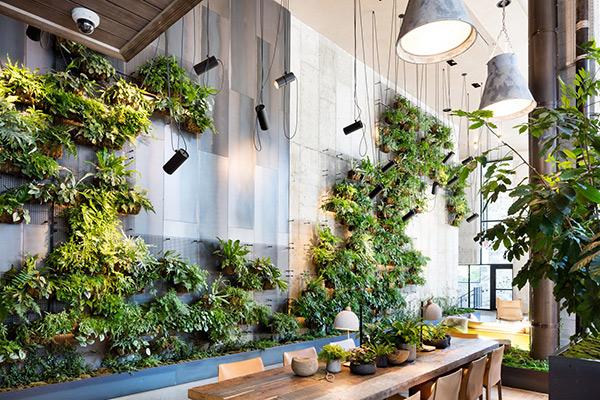 دیوار کاذب جدا کننده یا پارتیشن سبز